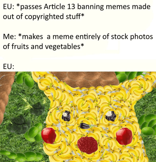 fruits: EU: *passes Article 13 banning memes made  out of copyrighted stuff*  Me: *makes a meme entirely of stock photos  of fruits and vegetables*  EU: