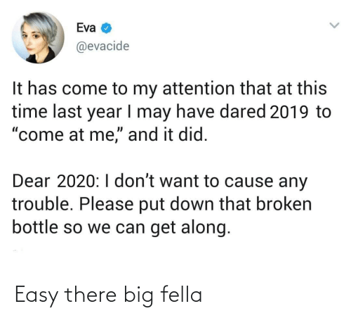 "I Dont Want: Eva  @evacide  It has come to my attention that at this  time last year I may have dared 2019 to  ""come at me,"" and it did.  Dear 2020:I don't want to cause any  trouble. Please put down that broken  bottle so we can get along. Easy there big fella"