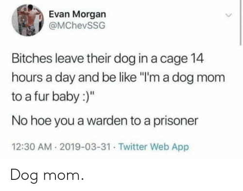 "A Day: Evan Morgan  @MChevSSG  Bitches leave their dog in a cage 14  hours a day and be like ""I'm a dog mom  to a fur baby:  No hoe you a warden to a prisoner  12:30 AM 2019-03-31 Twitter Web App Dog mom."