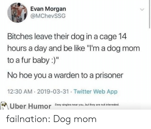 "A Day: Evan Morgan  @MChevSSG  Bitches leave their dog in a cage 14  hours a day and be like ""I'm a dog mom  to a fur baby:)""  No hoe you a warden to a prisoner  12:30 AM 2019-03-31 Twitter Web App  Sexy singies near you, but they are not interested  Uber  Humor failnation:  Dog mom"