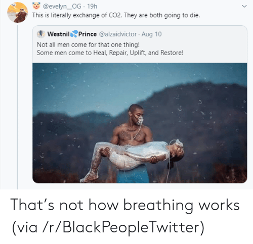 Blackpeopletwitter, Prince, and How: @evelyn_OG 19h  This is literally exchange of CO2. They are both going to die.  Westnil Prince @alzaidvictor Aug 10  Not all men come for that one thing!  Some men come to Heal, Repair, Uplift, and Restore! That's not how breathing works (via /r/BlackPeopleTwitter)