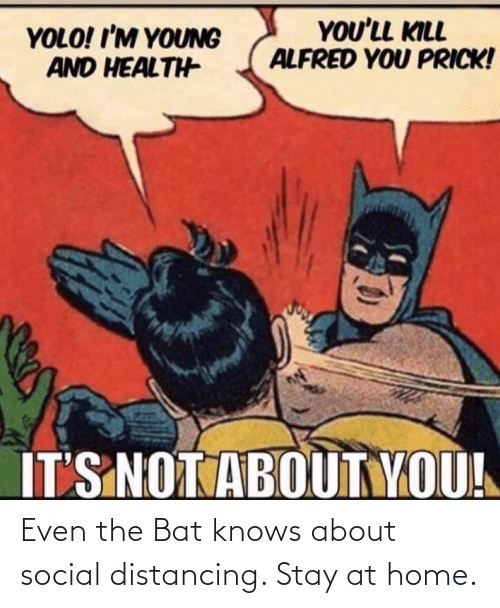 bat: Even the Bat knows about social distancing. Stay at home.