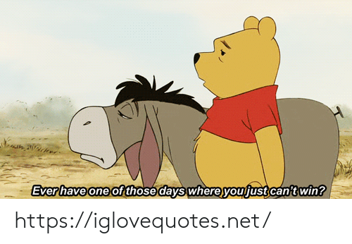 Net, One, and Win: Everhave one of those days whereyoufust can't win? https://iglovequotes.net/