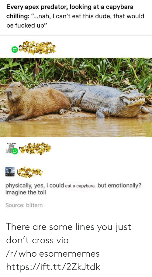 "toll: Every apex predator, looking at a capybara  chilling: ""..nah, I can't eat this dude, that would  be fucked up""  CONCERN  physically, yes, i could eat a capybara. but emotionally?  imagine the toll  Source: bittern There are some lines you just don't cross via /r/wholesomememes https://ift.tt/2ZkJtdk"