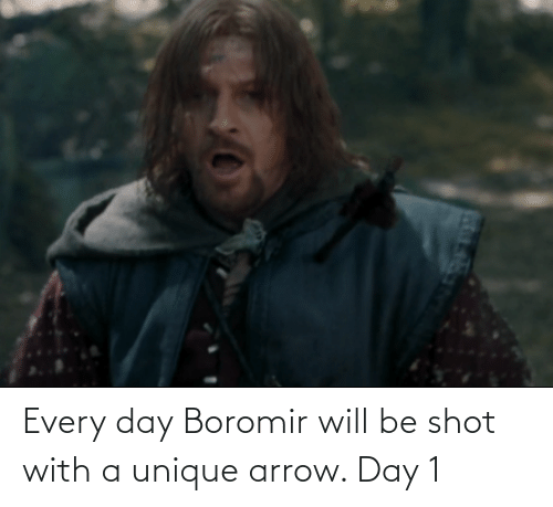 Arrow: Every day Boromir will be shot with a unique arrow. Day 1