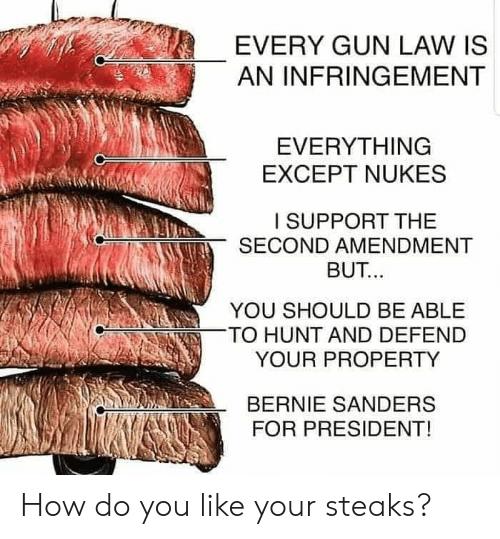Bernie Sanders, Memes, and Bernie: EVERY GUN LAW IS  AN INFRINGEMENT  EVERYTHING  EXCEPT NUKES  I SUPPORT THE  SECOND AMENDMENT  BUT..  YOU SHOULD BE ABLE  TO HUNT AND DEFEND  YOUR PROPERTY  BERNIE SANDERS  FOR PRESIDENT! How do you like your steaks?