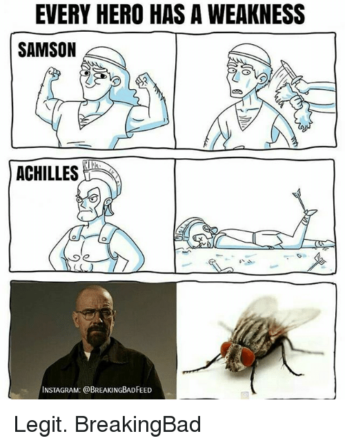 Instagram, Memes, and 🤖: EVERY HERO HAS A WEAKNESS  SAMSON  ACHILLES  INSTAGRAM: @BREAKINGBADFEED Legit. BreakingBad