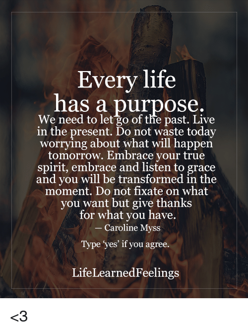 "a life has a purpose ""everyone has a purpose in life  words of wisdom - index page life purpose spiritual awareness success and abundance wisdom from the heart happiness and wellbeing."