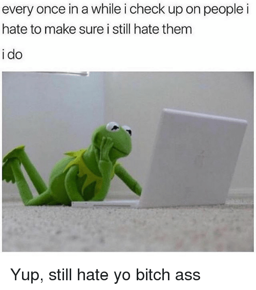 Ass, Bitch, and Memes: every once in a while i check up on peoplei  hate to make sure i still hate them  i do Yup, still hate yo bitch ass