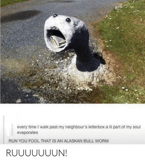 worm: every time I walk past my neighbour's letterbox a lil part of my soul  evaporates  RUN YOU FOOL THAT IS AN ALASKAN BULL WORM RUUUUUUUN!