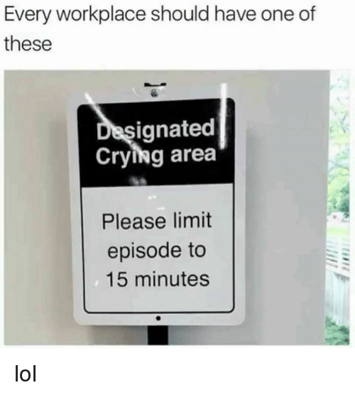 Crying, Dank, and Lol: Every workplace should have one of  these  ignated  Crying area  Please limit  episode to  15 minutes lol