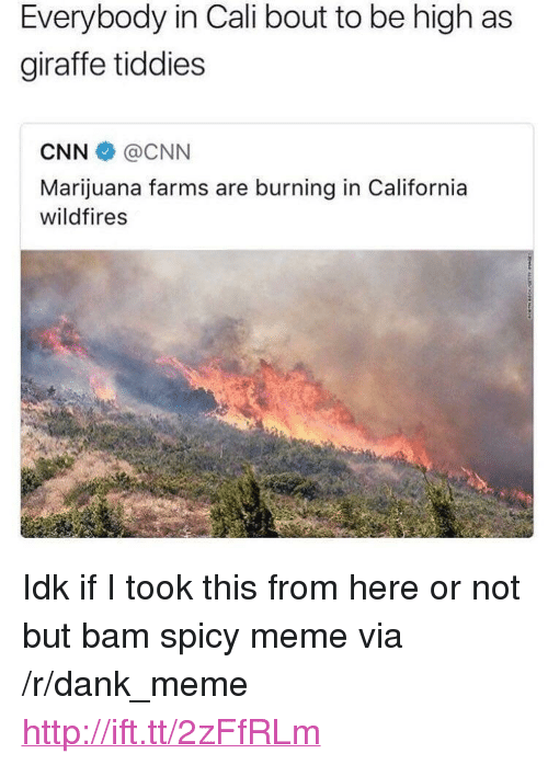 """Spicy Meme: Everybody in Cali bout to be high as  giraffe tiddies  CNN@CNN  Marijuana farms are burning in California  wildfires <p>Idk if I took this from here or not but bam spicy meme via /r/dank_meme <a href=""""http://ift.tt/2zFfRLm"""">http://ift.tt/2zFfRLm</a></p>"""