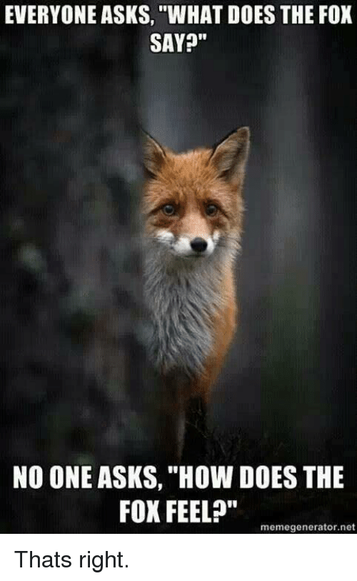 """The Fox Say: EVERYONE ASKS, """"WHAT DOES THE FOX  SAY?""""  NO ONE ASKS, """"How DOES THE  FOX FEEL?""""  memegenerator.net Thats right."""