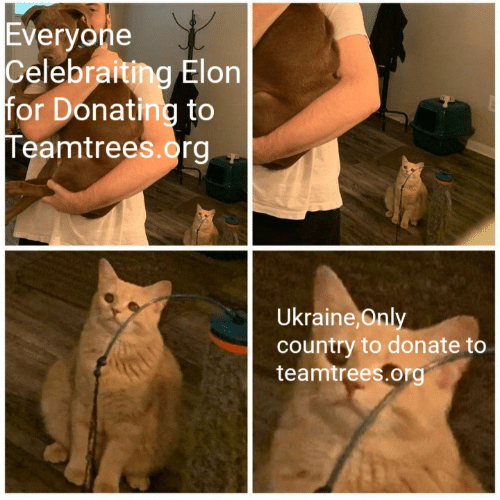 donate: Everyone  Celebraiting Elon  for Donating to  Teamtrees.org  Ukraine, Only  country to donate to  teamtrees.org