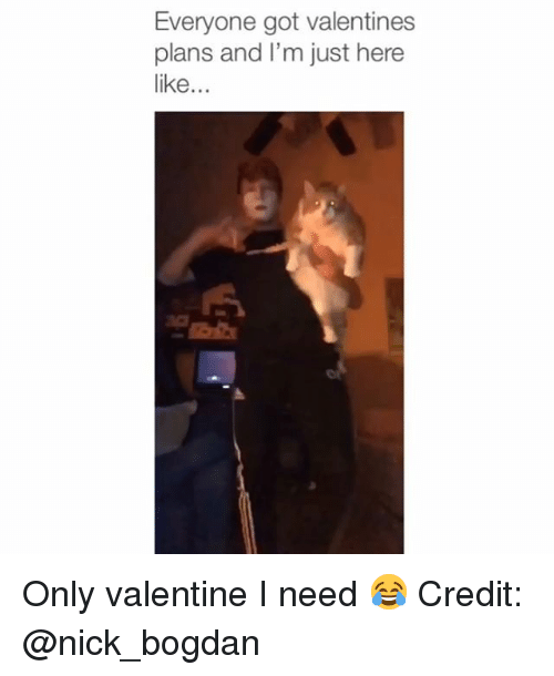 Memes, Nick, and 🤖: Everyone got valentines  plans and I'm just here  like... Only valentine I need 😂 Credit: @nick_bogdan