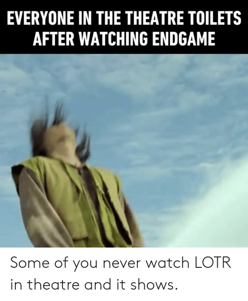 Dank, Watch, and Never: EVERYONE IN THE THEATRE TOILETS  AFTER WATCHING ENDGAME Some of you never watch LOTR in theatre and it shows.