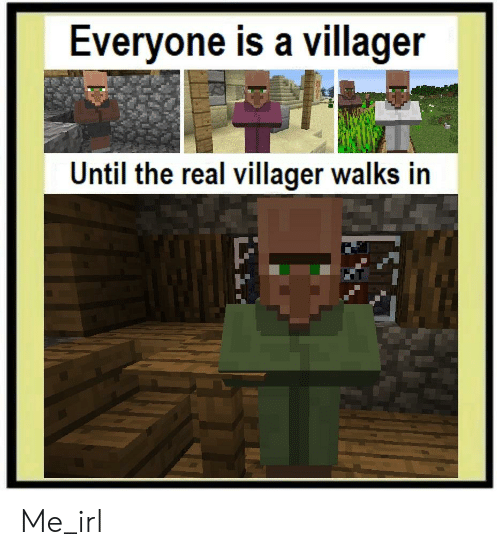 The Real, Irl, and Me IRL: Everyone is a villager  Until the real villager walks in Me_irl