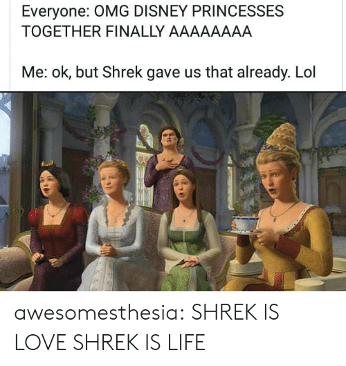 aaaaaaaa: Everyone: OMG DISNEY PRINCESSES  TOGETHER FINALLY AAAAAAAA  Me: ok, but Shrek gave us that already. Lol awesomesthesia:  SHREK IS LOVE SHREK IS LIFE
