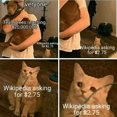 Wikipedia, Asking, and For: Everyone  TeamTrees reaching  $20,000,000  Wikipedia asking  for $2.75  Wikipedia asking  for $2.75  Wikipedia asking  for $2.75  Wikipedia asking  for $2.75