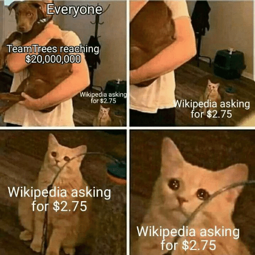 wikipedia: Everyone  TeamTrees reaching  $20,000,000  Wikipedia asking  for $2.75  Wikipedia asking  for $2.75  Wikipedia asking  for $2.75  Wikipedia asking  for $2.75