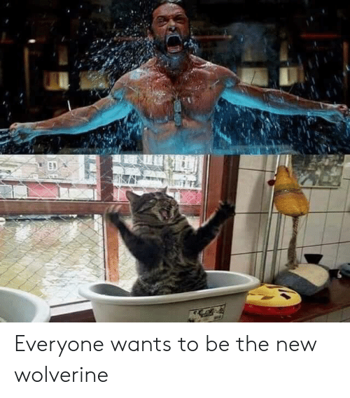 Wolverine: Everyone wants to be the new wolverine