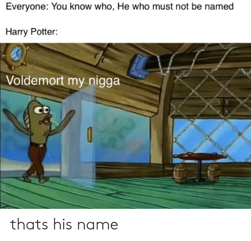 Harry Potter, My Nigga, and Potter: Everyone: You know who, He who must not be named  Harry Potter:  Voldemort my nigga  CD thats his name