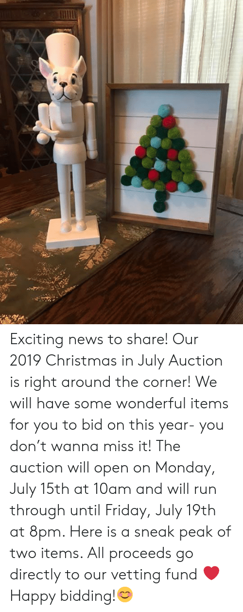 Christmas, Friday, and Memes: Exciting news to share! Our 2019 Christmas in July Auction is right around the corner! We will have some wonderful items for you to bid on this year- you don't wanna miss it! The auction will open on Monday, July 15th at 10am and will run through until Friday, July 19th at 8pm.  Here is a sneak peak of two items.  All proceeds go directly to our vetting fund ❤️ Happy bidding!😊
