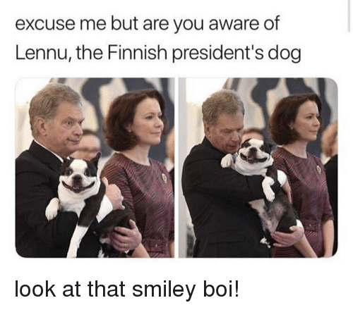 smiley: excuse me but are you aware of  Lennu, the Finnish president's dog look at that smiley boi!