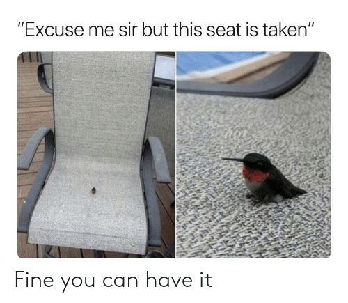 "Taken, Can, and Seat: ""Excuse me sir but this seat is taken"" Fine you can have it"