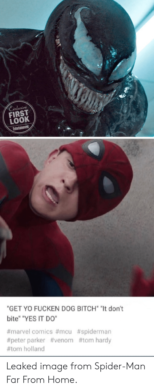 """Marvel Comics: Exelusive  FIRST  LOOK  """"GET YO FUCKEN DOG BITCH """"It don't  bite"""" """"YES IT DO""""  #marvel comics #mcu #spiderman  #peter parker #venom #tom hardy  #tom holland Leaked image from Spider-Man Far From Home."""