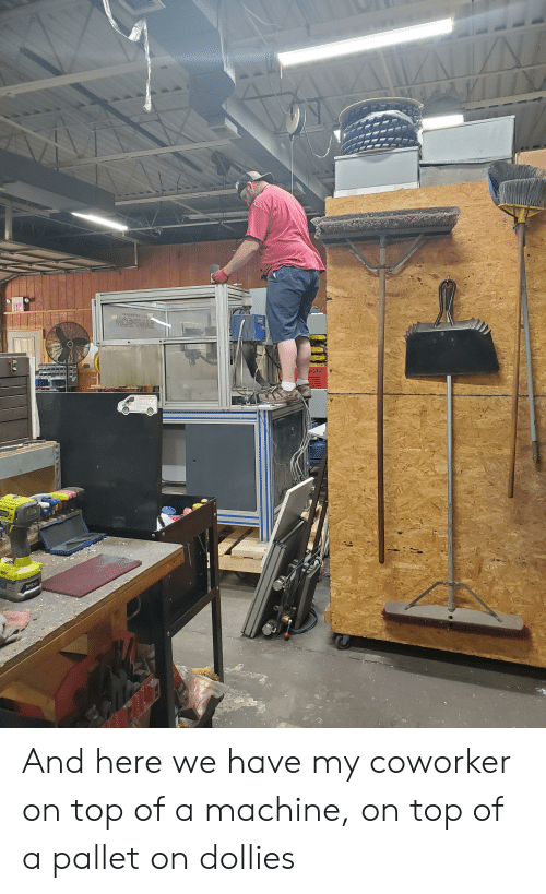 Top, Machine, and Pallet: EXF  Ya 03RUTTEAguA  NATES  RYO And here we have my coworker on top of a machine, on top of a pallet on dollies