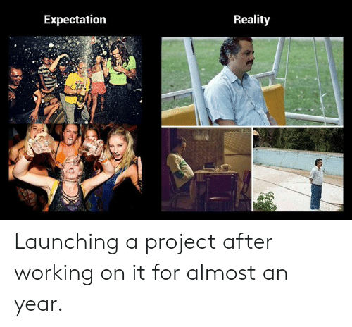 Reality, Working, and Project: Expectation  Reality Launching a project after working on it for almost an year.