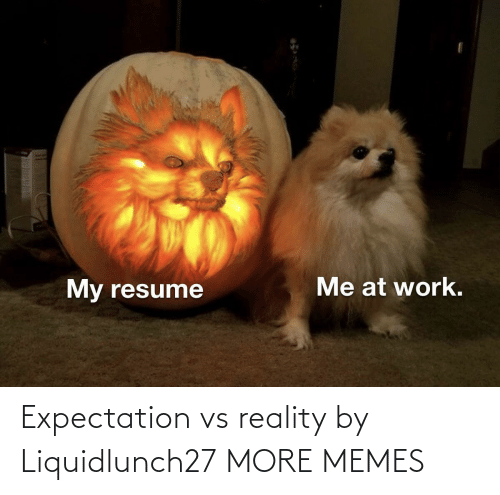 Vs Reality: Expectation vs reality by Liquidlunch27 MORE MEMES