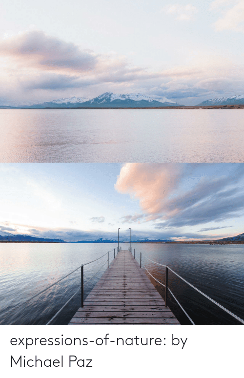Nature: expressions-of-nature:  by Michael Paz