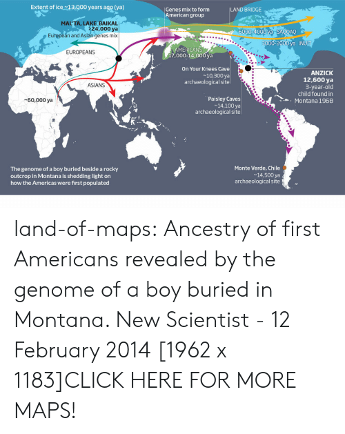 Populated: Extent of ice13.000 years ago (ya)  Genes mix to form  American group  LAND BRIDGE  MAL'TA, LAKE BAIKAL  24,000 ya  6000-4000 va SAOOAO  European and Asian genes mix  3000-2000 va INUI  MERICANS  17,000-14,000 ya  EUROPEANS  On Your Knees Cave  ~10,300 ya  archaeological site  ANZICK  12,600 ya  3-year-old  child found in  Montana 1968  ASIANS  Paisley Caves  14,100 ya  archaeological site  60,000 ya  Monte Verde, Chile  The genome of a boy buried beside a rocky  outcrop in Montana is shedding light on  how the Americas were first populated  14,500 ya  archaeological site land-of-maps:  Ancestry of first Americans revealed by the genome of a boy buried in Montana. New Scientist - 12 February 2014 [1962 x 1183]CLICK HERE FOR MORE MAPS!
