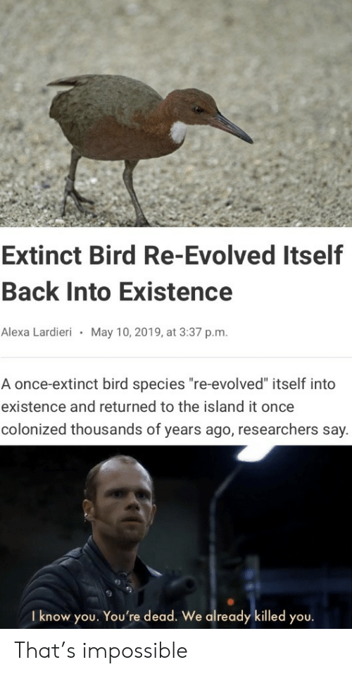 "the island: Extinct Bird Re-Evolved Itself  Back Into Existence  Alexa Lardieri  May 10, 2019, at 3:37 p.m.  A once-extinct bird species ""re-evolved"" itself into  existence and returned to the island it once  colonized thousands of years ago, researchers say.  I know you. You're dead. We already killed you. That's impossible"