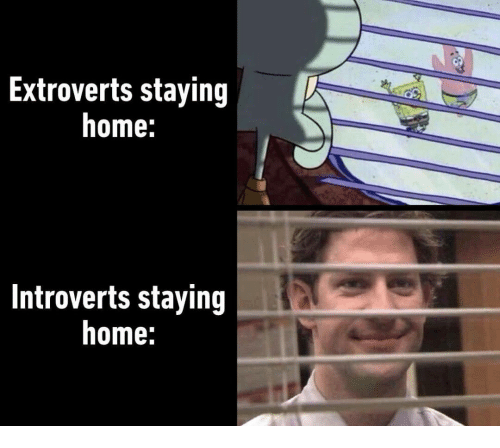 Staying Home: Extroverts staying  home:  Introverts staying  home: