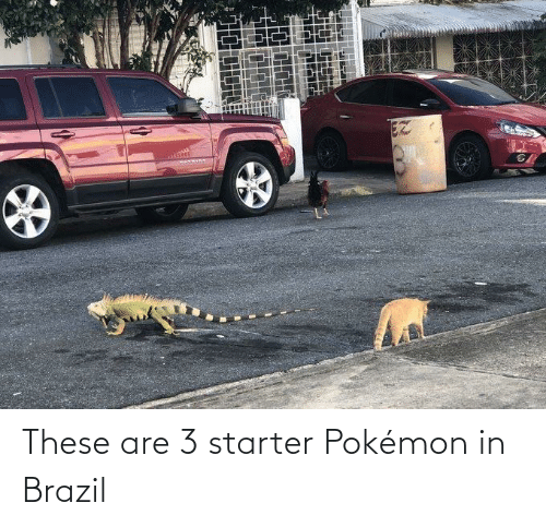 Brazil: EZ These are 3 starter Pokémon in Brazil
