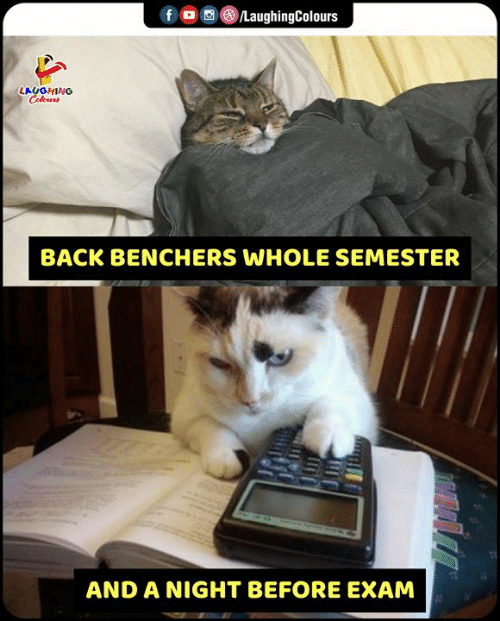 Indianpeoplefacebook, Back, and Laughing: f  /LaughingColours  LAUGHING  Celours  BACK BENCHERS WHOLE SEMESTER  AND A NIGHT BEFORE EXAM