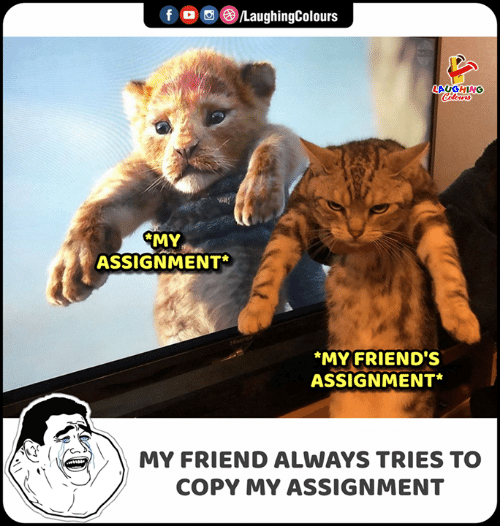 Friends, Indianpeoplefacebook, and Hisense: f  LaughingColours  LAUGHING  Colours  CMY  ASSIGNMENT  Hisense  MY FRIEND'S  ASSIGNMENT*  MY FRIEND ALWAYS TRIES TO  COPY MY ASSIGNMENT