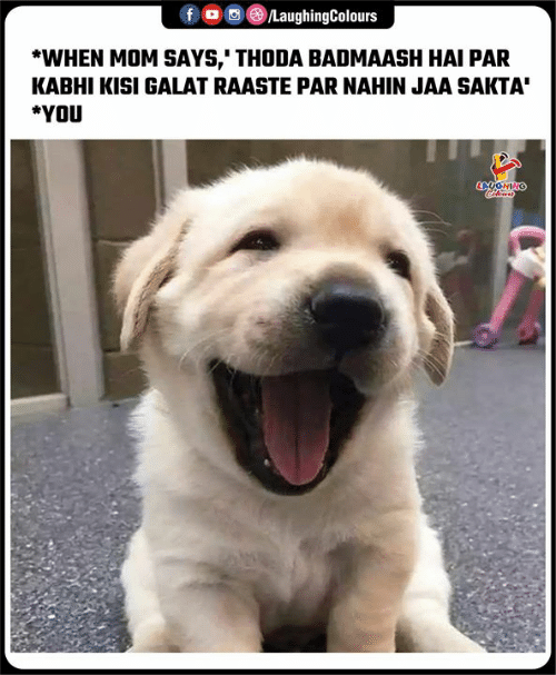 Kisi: f  /LaughingColours  *WHEN MOM SAYS,' THODA BADMAASH HAI PAR  KABHI KISI GALAT RAASTE PAR NAHIN JAA SAKTA  *YOU  LAUGHINO