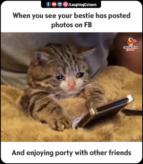 Friends, Party, and Indianpeoplefacebook: f/LaughingColours  When you see your bestie has posted  photos on FB  AUGHING  And enjoying party with other friends
