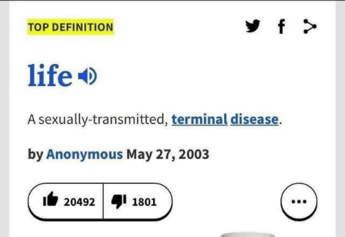 terminal: f  TOP DEFINITION  life  A sexually-transmitted, terminal disease.  by Anonymous May 27, 2003  20492  1801