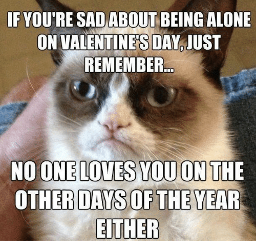 Alone On Valentines Day: F YOU'RE SAD ABOUT BEING ALONE  ON VALENTINE'S DAY JUST  REMEMBER  OTHER DAYS OF THE YEAR  EITHER