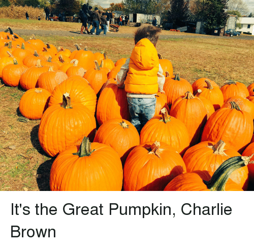 Charlie, Memes, and Browns: f2 It's the Great Pumpkin, Charlie Brown