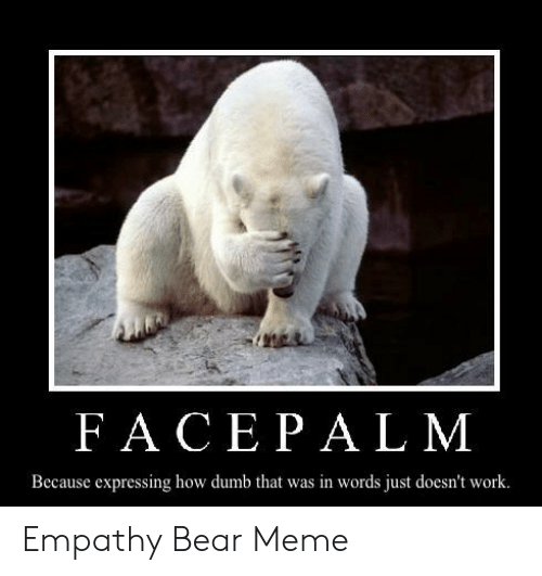 Empathy Bear: FACEPAL M  Because expressing how dumb that was in words just doesn't work. Empathy Bear Meme
