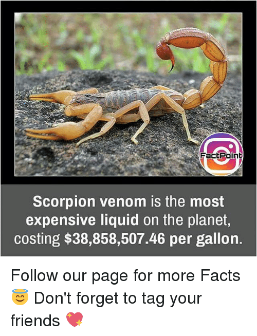 factpoint scorpion venom is the most expensive liquid on the 15658415 factpoint scorpion venom is the most expensive liquid on the