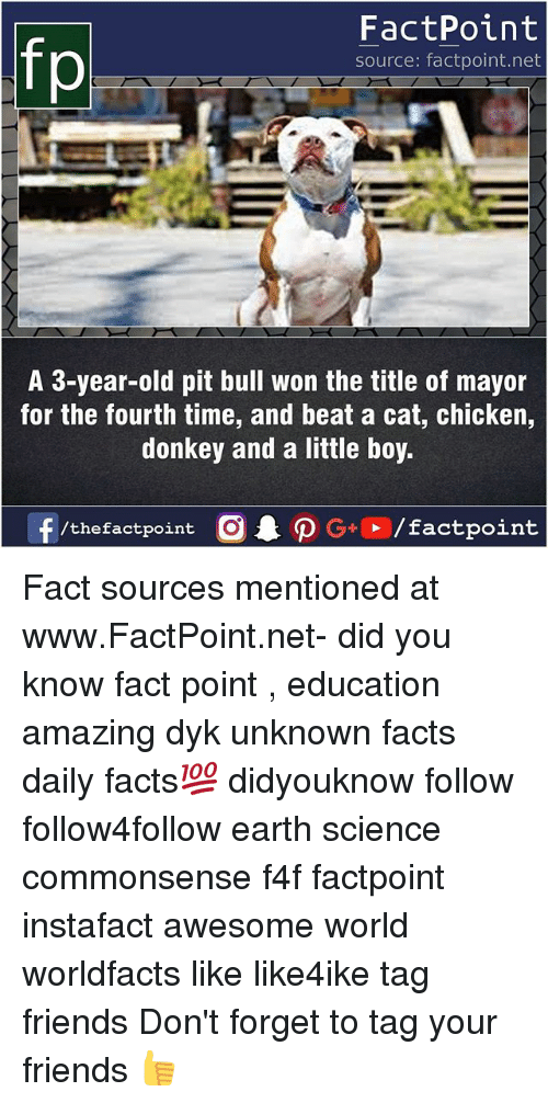 Donkey, Facts, and Friends: FactPoint  source: factpoint.net  A 3-year-old pit bull won the title of mayor  for the fourth time, and beat a cat, chicken,  donkey and a little boy.  f/thefactpoint  G+/factpoint Fact sources mentioned at www.FactPoint.net- did you know fact point , education amazing dyk unknown facts daily facts💯 didyouknow follow follow4follow earth science commonsense f4f factpoint instafact awesome world worldfacts like like4ike tag friends Don't forget to tag your friends 👍