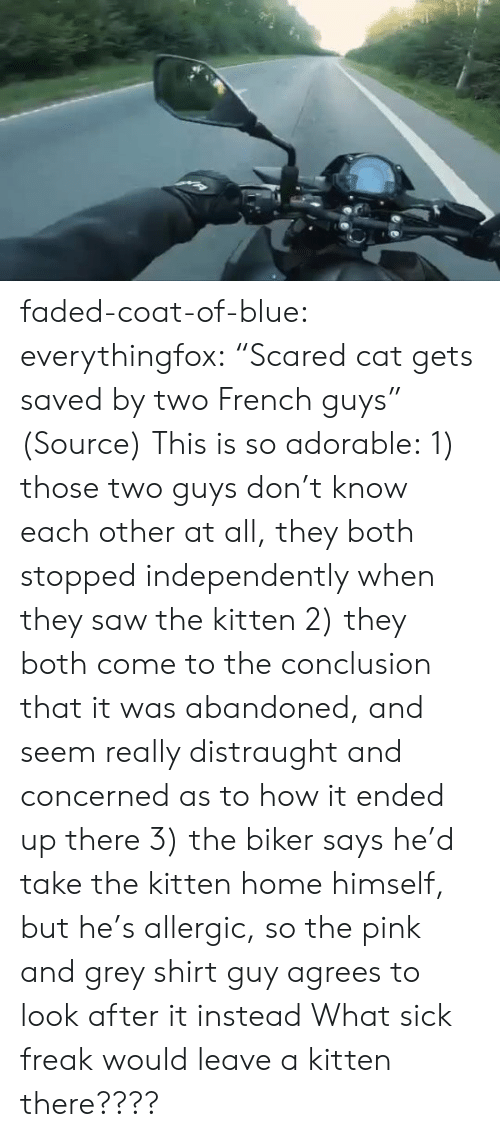 "conclusion: faded-coat-of-blue: everythingfox:   ""Scared cat gets saved by two French guys"" (Source)   This is so adorable: 1) those two guys don't know each other at all, they both stopped independently when they saw the kitten  2) they both come to the conclusion that it was abandoned, and seem really distraught and concerned as to how it ended up there 3) the biker says he'd take the kitten home himself, but he's allergic, so the pink and grey shirt guy agrees to look after it instead   What sick freak would leave a kitten there????"