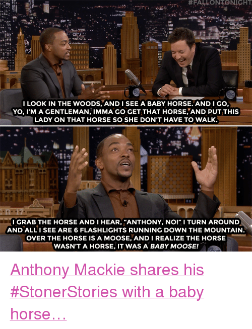"""Imma Go:  #FALLONTONIGHT  I LOOK IN THE WOODS, ANDISEE A BABY HORSE. AND I GO,  YO, I'M A GENTLEMAN, IMMA GO GET THAT HORSE AND PUT THIS  LADY ON THAT HORSE SO SHE DON'T HAVE TO WALK.  LB  I GRAB THE HORSE AND I HEAR, """"ANTHONY, NO!"""" I TURN AROUND  AND ALLI SEE ARE 6 FLASHLIGHTS RUNNING DOWN THE MOUNTAIN  OVER THE HORSE IS A MOOSE, ANDI REALIZE THE HORSE  WASN'T A HORSE, IT WAS A BABY MOOSE! <p><a href=""""https://www.youtube.com/watch?v=4m2JSlOuQu8"""" target=""""_blank"""">Anthony Mackie shares his #StonerStories with a baby horse&hellip;</a></p>"""